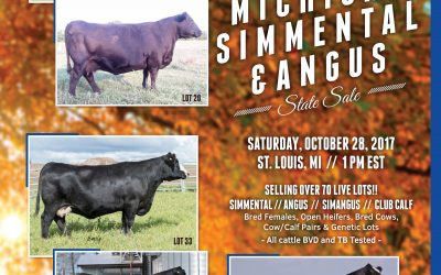 2017 Michigan Simmental Fall Sale Catalog