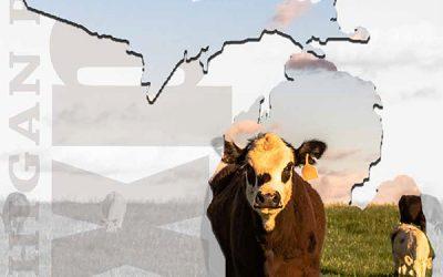 MI Beef Expo Catalog